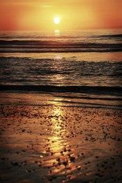 sunrise coco